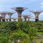 Singapur - Julio 2016: Itinerario de viaje 1 día