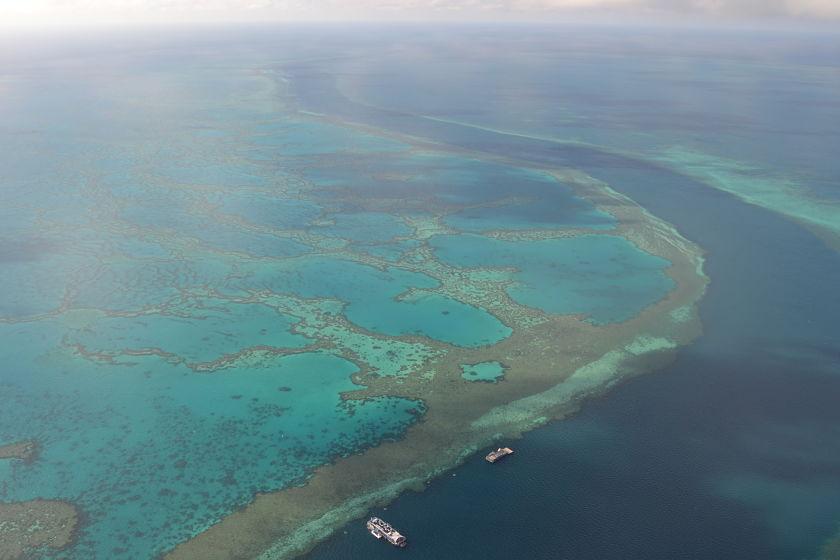 Gran Barrera de Coral Great Barrier Reef, Australia