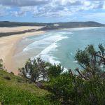 Diario Australia - Julio-Agosto 2016: Días 14-16: Hervey Bay: Shelly Beach, Fraser Island, Avistaje Ballenas
