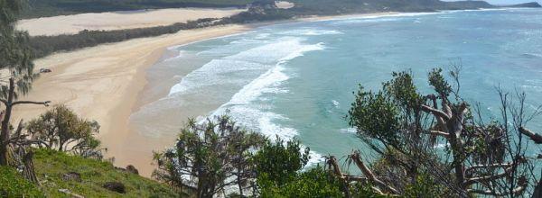 Diario Australia – Julio-Agosto 2016: Días 14-16: Hervey Bay: Shelly Beach, Fraser Island, Avistaje Ballenas