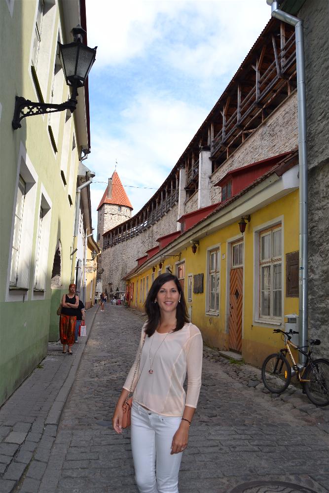 Muurivahe, Tallin, Estonia