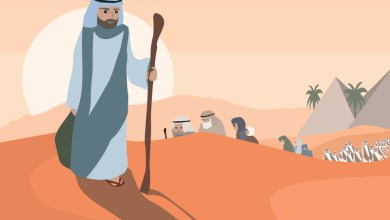 Photo of Сколько евреев вышло из Египта?