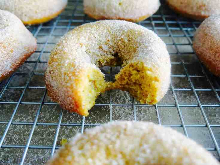 Soft baked pumpkin donuts dusted in cinnamon sugar. Pumpkin puree mixed with flour, butter and sugar all formed into these sweet fall treats. So moist and full of that bold pumpkin flavor we all love.