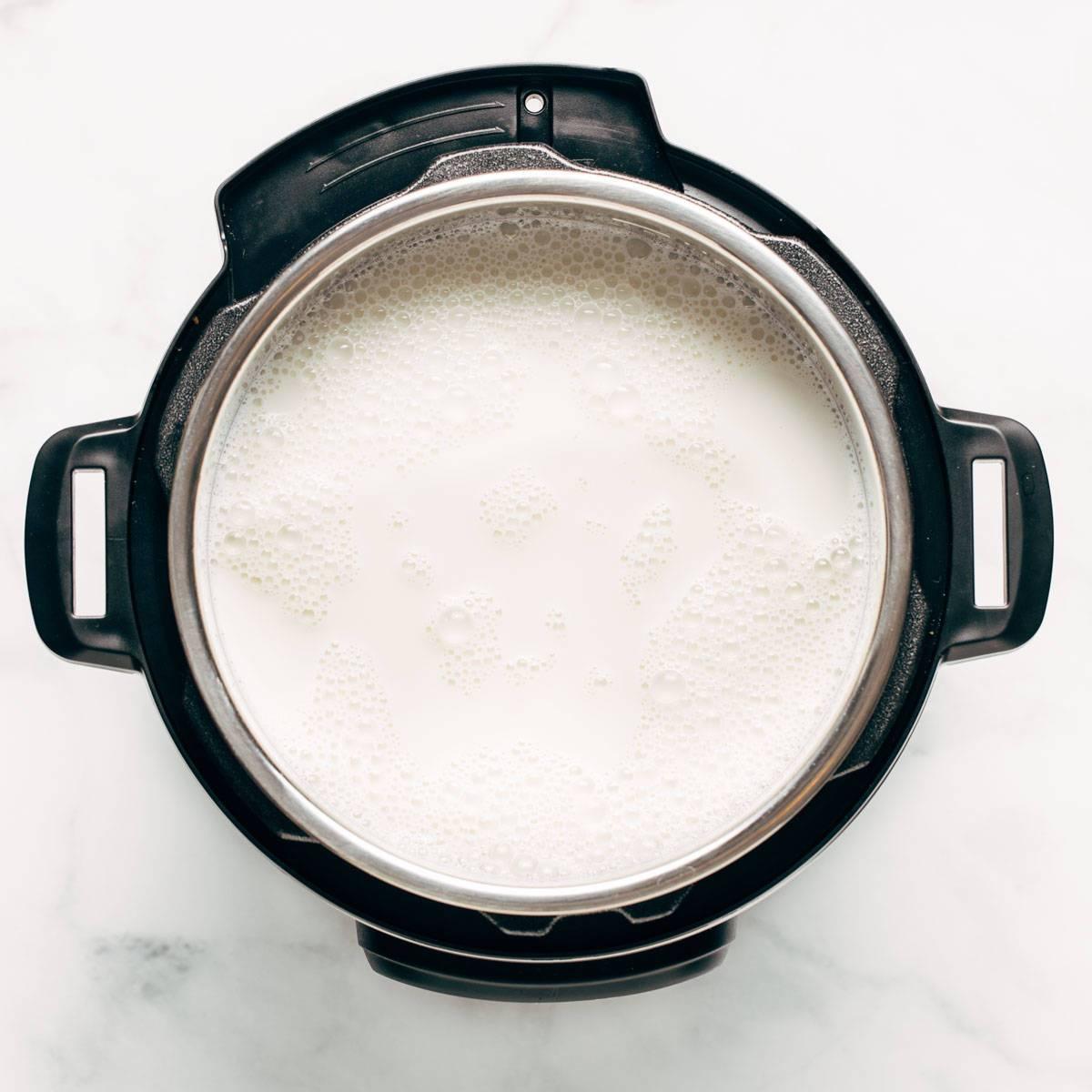 Yogurt in the Instant Pot.