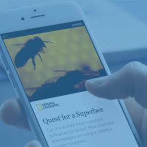 5 stvari o facebook instant articles