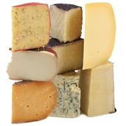 cheeseWeb