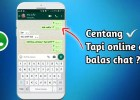 Cara WhatsApp Centang Satu Tapi Online Tanpa Aplikasi
