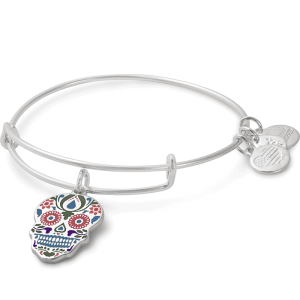 Alex and Ani Calavera Color Infusion Charm Bangle