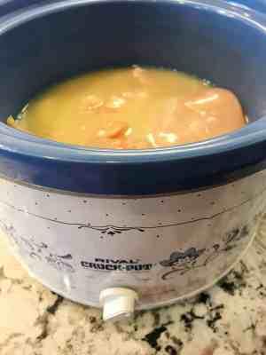 crock pot shredded chicken
