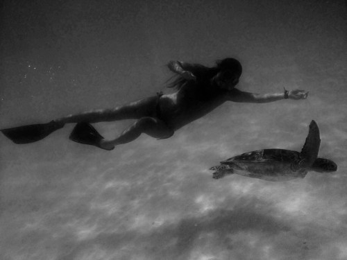 Girl floating with a turtle. Great Barrier Reef, Australia - March 2014 - pineapple loves photography