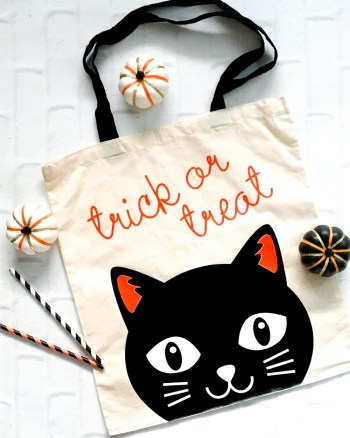 Make Your Own DIY Halloween Trick or Treat Bag with the Cricut Maker by Pineapple Paper Co.