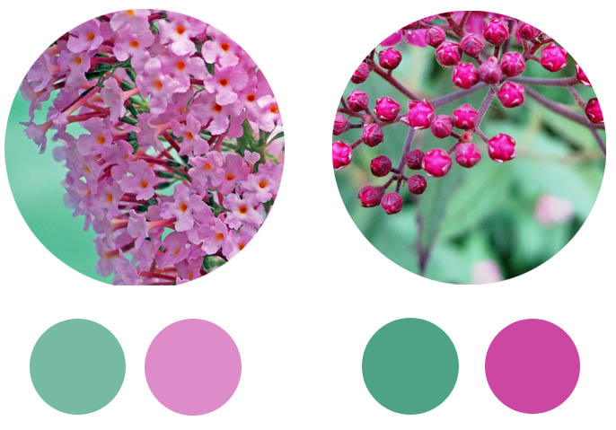 spring_lensdepictions