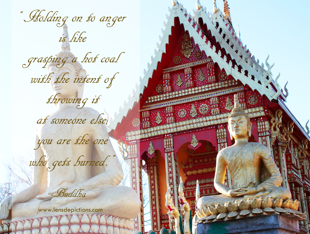 budhha-picture-quote-lensdepictions5
