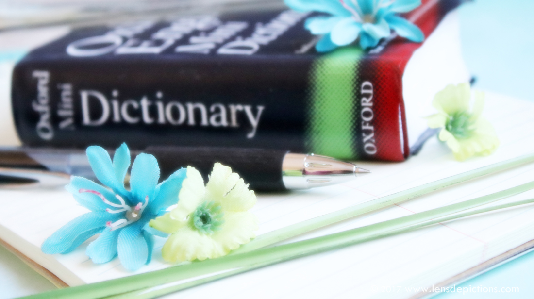 Dictionary-Lensdepictions