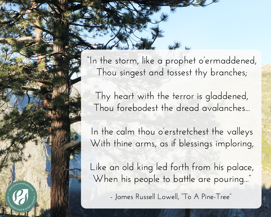 James-Russell-Lowell_PineTree