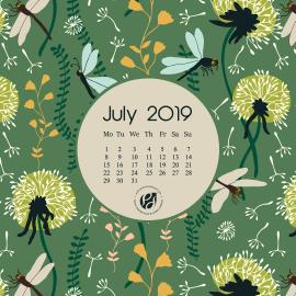 July 2019 desktop calendar wallpaper