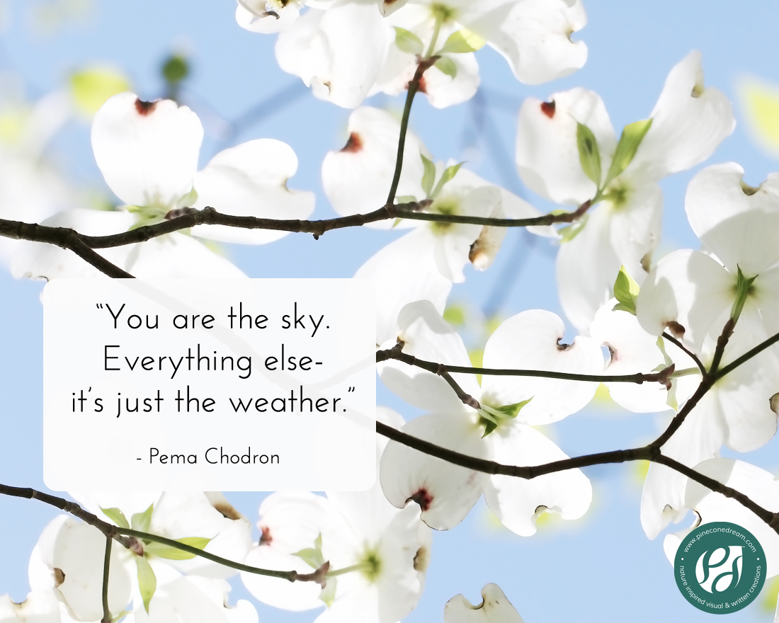 A mindfulness quote by Pema Chodron