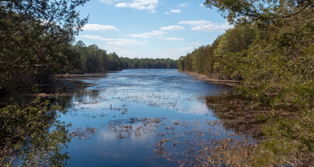 Landscape photo from Bass River state park