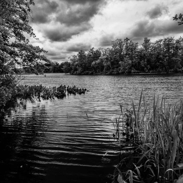 Rancocas State Park NJ