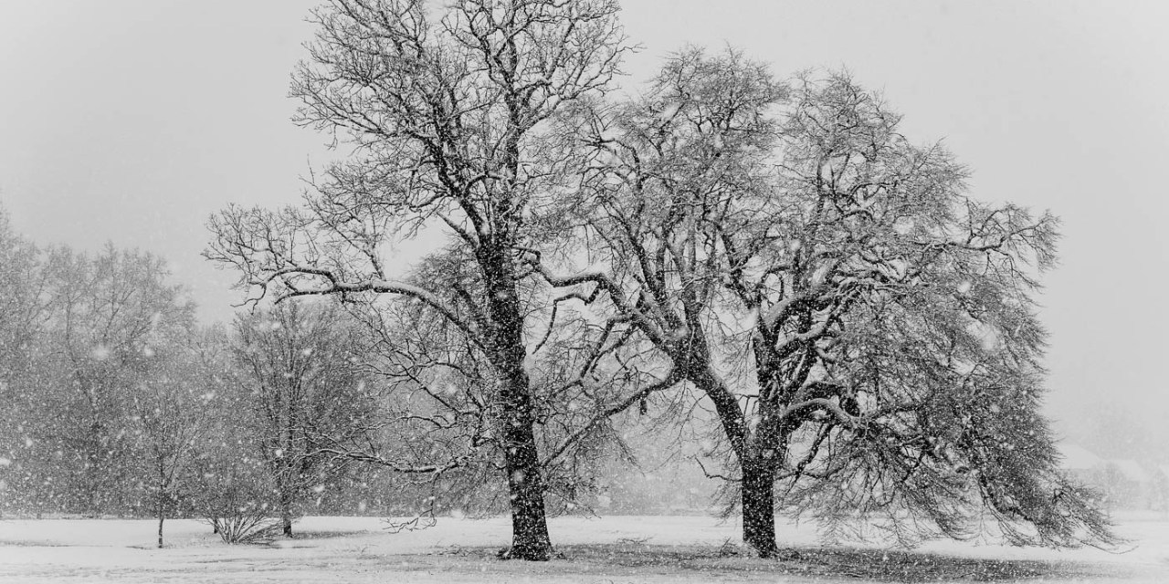 Snow Storm March 2018