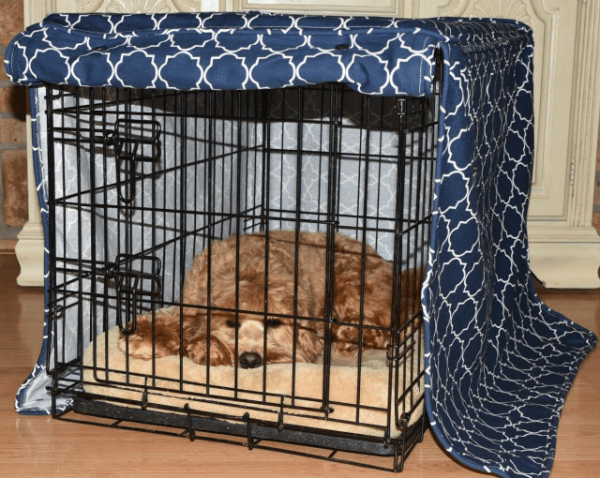 Molly Mutt Crate