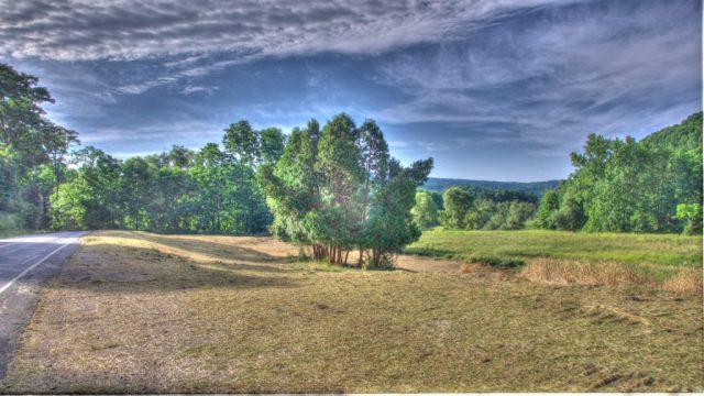 landscape now