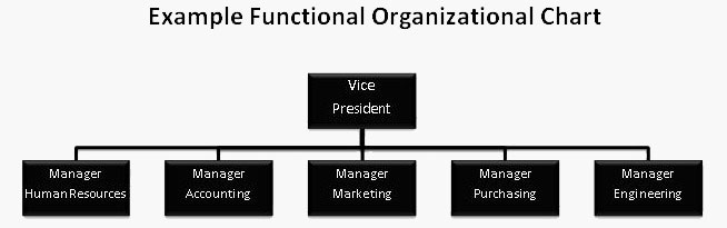 Functional Org Chart