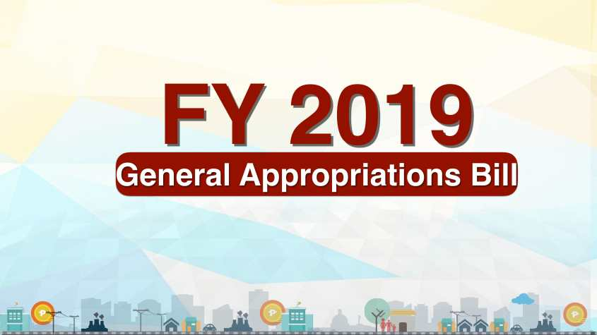 FY 2019 Budget Plenary 05 December 2018-01