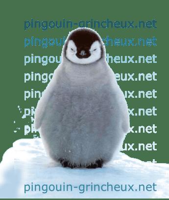hotlink_pingouin