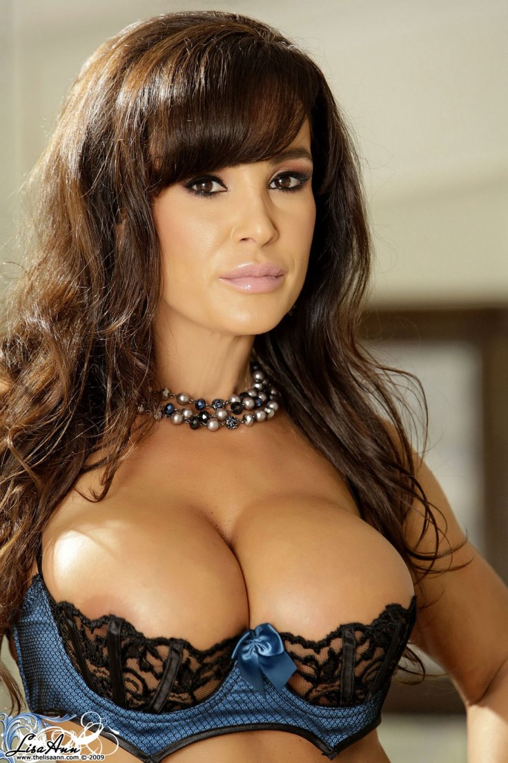 lisa ann black lingerie (4)
