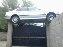 les rois du parking tuii866758_0006