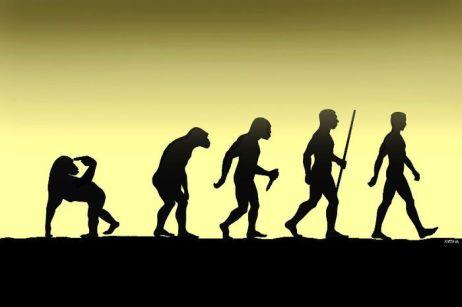 evolution 1457891648_evolution_03