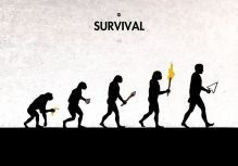 evolution 1457891666_evolution_42