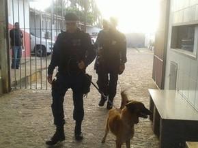 Foto: Divulgação/Sejuc
