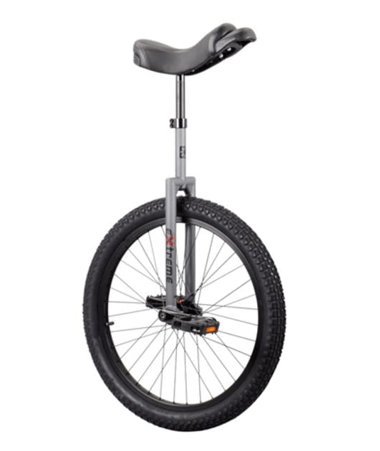 Sun Bicycles Unicycle Sun 24-in Extreme
