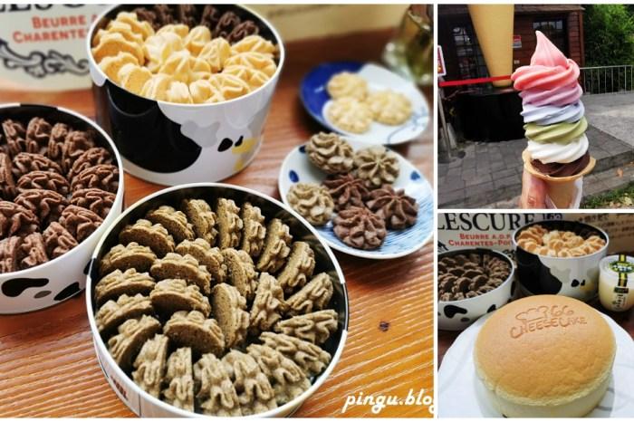 溪湖美食|66 Cheesecake 北海道彩虹霜淇淋 曲奇餅乾 乳酪蛋糕 十勝牛奶布丁 彰化必敗伴手禮