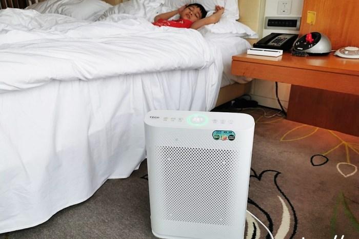 空氣清淨機推薦|TECO東元家電 智慧感應空氣清淨機NN2501BD 乾淨看的見