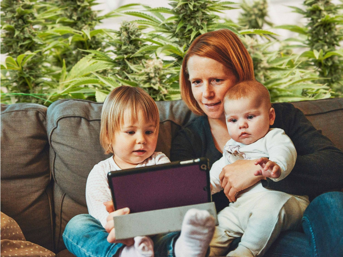 how-to-tell-your-kids-about-your-cannabis-grow-op
