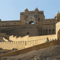 3572946-Amber-Fort-0