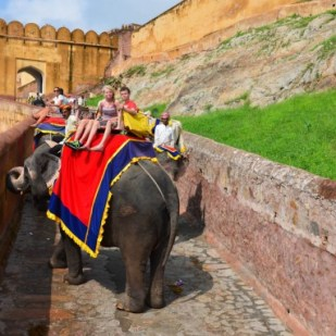 Jaipur-Amber-Fort-elephant-ride-576x382