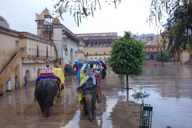 Raining on the Elephant Parade