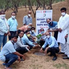 Plantation in Manpura Machedi village-4