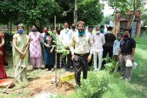 Senior Indian Forest Service officer did tree plantation festival on retirement