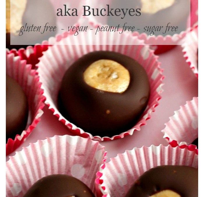 """Clean"" Chocolate Peanut Butter Balls aka Buckeyes"