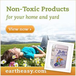 Earth Easy