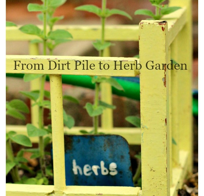 From Dirt Pile to Herb Garden