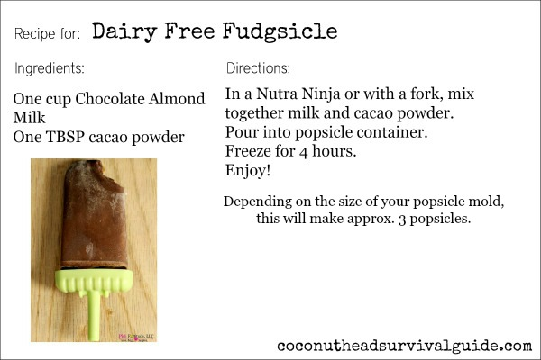 Dairy Free Fudgsicle2