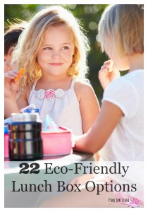 22 Eco-Friendly Lunch Box Options