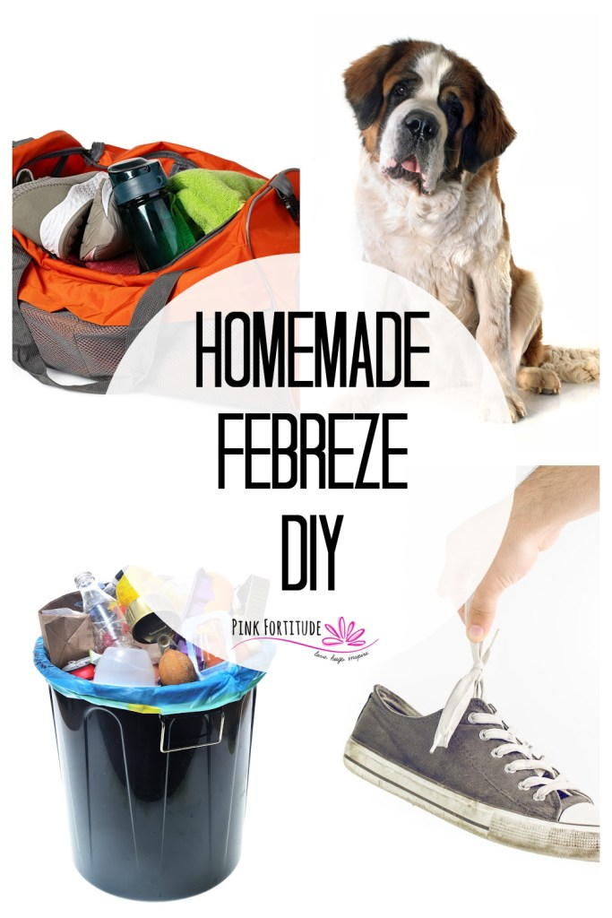 I love the idea of Febreze (or Fabreeze). Sometimes your home or car or whatever needs a little extra dose of good smells. Let me show you how you can make your own DIY version in just a few minutes.