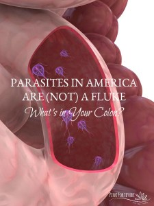 Parasites in America are (not) a Fluke – What's in Your Colon?